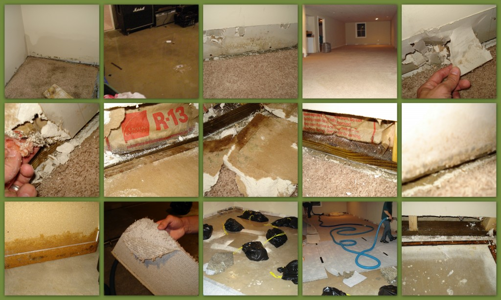 Always use a backup sump pump in your finished basement